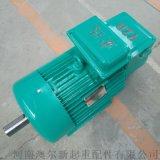 YZR绕线转子电机 单轴/双轴电机 交流调速电机