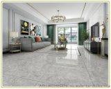 鶴壁盛通地板磚-新款優質通體地板磚生產廠家