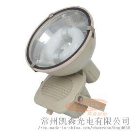 投光灯厂房仓库照明灯无极灯码头灯