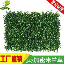 仿真植物塑料假草坪装饰形象背景墙阳台地毯垫子