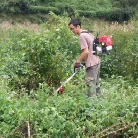 泸州市多功能背负除草开荒机手持家用草坪打草机