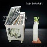 白萝卜红薯清洗机 果蔬清洗去皮毛刷机 果蔬清洗机
