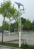 路燈戶外家用庭院燈室外防水草坪燈公園