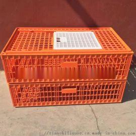 供應塑料成雞籠子 大雞塑料籠子 塑料雞鴨大籠子