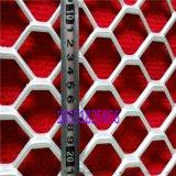 六角孔鋼板網 異形鋼板網 裝飾鋼板網 重型鋼板網