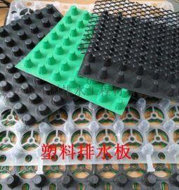 供应塑料防渗排水板 防潮板 厂家随时发货