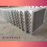 洗涤烘干散热器洗衣房专用热风机