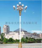 天光燈具中華燈