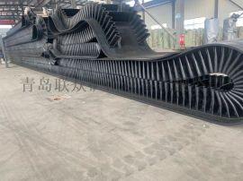 300宽斗提机钢丝绳输送带生产厂家