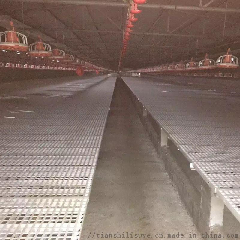 鸡鸭塑料漏粪床鸡用漏粪网床养鸡  漏粪板厂家
