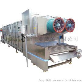 陈皮清洗烘干流水线 切片水蜜桃烘干机