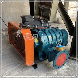 三叶罗茨风机鱼塘工业高压污水处理熔喷布强力鼓风机