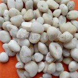 石家庄雨花石厂家 3-5公分雨花石 水族鱼缸装饰