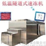 香蕉片隧道式速凍機 液氮化榴蓮肉隧道式速凍機