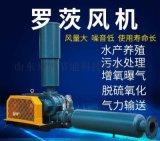 用于抵御特殊腐蚀的SR-T175罗茨风机厂家供应