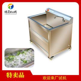 不鏽鋼洗菜機 單缸小型洗菜機 自動氣泡臭氧洗菜機