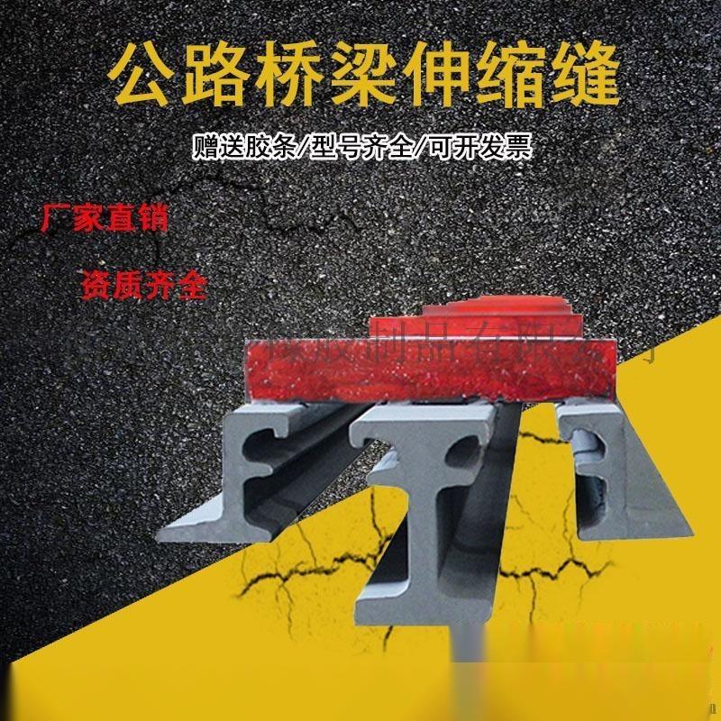 路面伸缩缝-F60型伸缩缝-大跨度桥梁适用