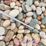 本格供应水处理鹅卵石 园林绿化专用鹅卵石 鹅卵石