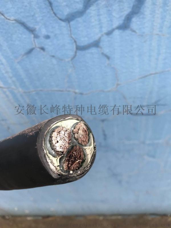 安徽長峯特種電纜YGC/3*25防水電纜YGVFC