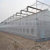 山東濰坊連棟溫室專家連棟薄膜溫室建設工程