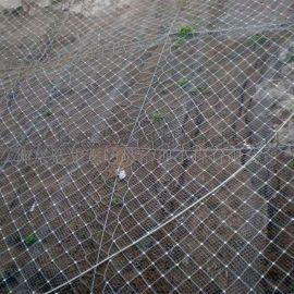 高速公路边坡防护网单价