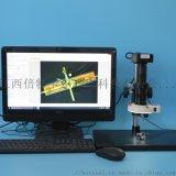BETICAL工业显微镜XDC-10A-E1200