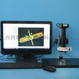 BETICAL工業顯微鏡XDC-10A-E1200