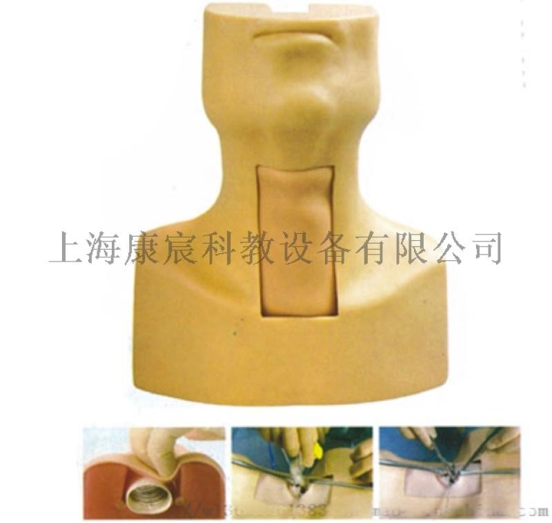 环甲膜穿刺及气管切开插管训练模型