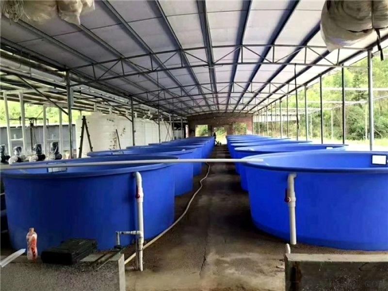 重慶竹筍塑料桶醃製桶加厚泡菜桶圓桶