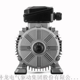 WOLONG/卧龙 标准4  效三相异步电动机