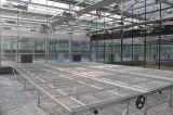 玻璃溫室/陽光板溫室/溫室設計甲級資質