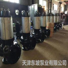 铰刀污水泵  国林绿化污水泵
