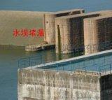 水電站壩體滲漏水維修防水堵漏處理