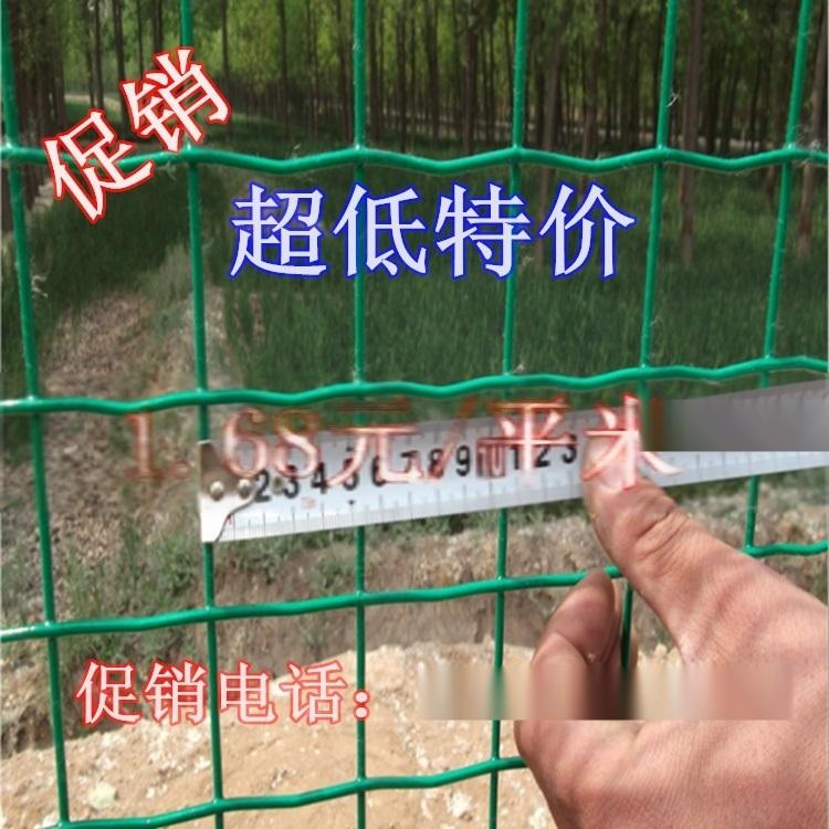 沃达 散养鸡用什么围网 荷兰网 散养鸡围栏