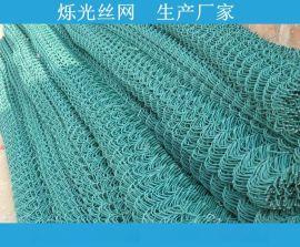 勾花护栏网 边坡绿化挂网 镀锌丝勾花网 包塑勾花网