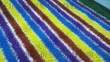 幼儿园彩虹跑道地毯 红黄蓝紫四色草坪仿真草坪