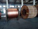 供應WDZ-VV 3*50+1*25齊魯電纜