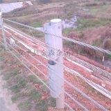 浙江钢索护栏加工厂家,钢索护栏生产,钢索护栏参数