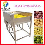 雅安平衡式果蔬毛辊喷淋清洗机