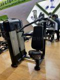 多功能坐式低拉背肌訓練器 運動器材專用力量機械直銷