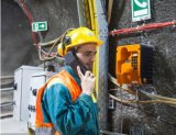 隧道应急/紧急电话系统-管廊紧急电话