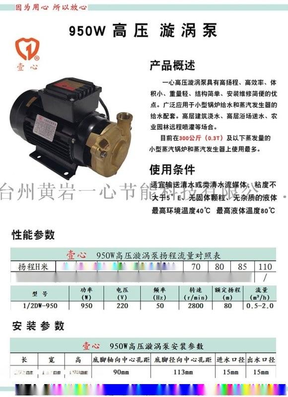 950W高压漩涡泵,锅炉给水泵补水泵,热水泵高温泵