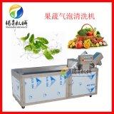 果蔬气泡清洗机 自动上料输送速度可调 饭堂洗菜机