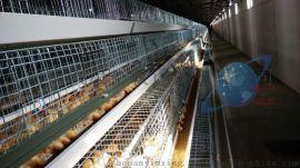 阶梯式鸡笼全自动化镀锌笼具河南银星养鸡设备厂家直销