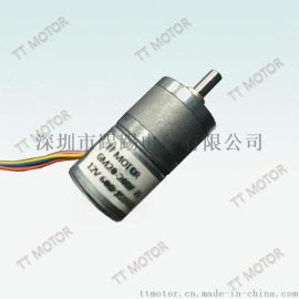 20毫米直径大力矩步进减速电机