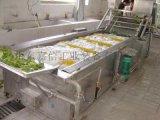 气泡式果蔬清洗机洗菜机 高压喷淋清洗机定制