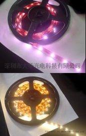 深圳大华光电滴胶防水LED软灯条