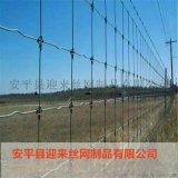 養殖防護網,高原牛羊圍網,草原網防護網