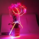 LED 植物灯带 4:1 5:1 滴胶防水 灯带 双面板 促进植物生长 12V