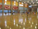 上海羽毛球馆吸音隔音处理
